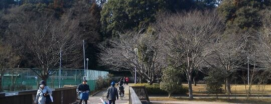 八千代総合運動公園 is one of サイクリング.