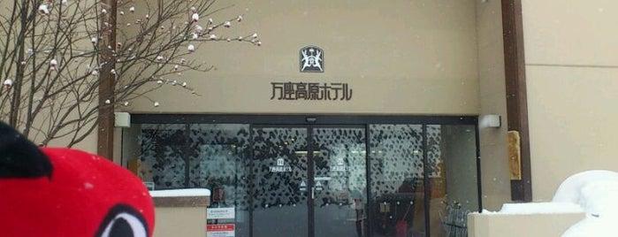 Manza Kogen Hotel is one of 宿泊履歴.