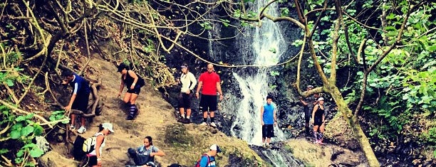 Likeke Falls is one of Not For Tourists Hawaii.