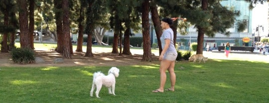 K-Town Dog Park is one of For K9 friends in SFValley+.