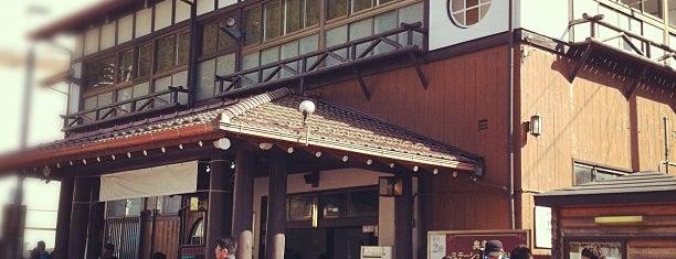 Okutama Station is one of 東京近郊区間主要駅.