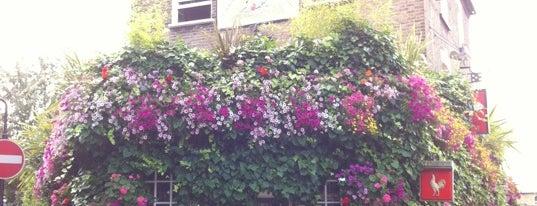 The Faltering Fullback is one of London's Best Beer Gardens.