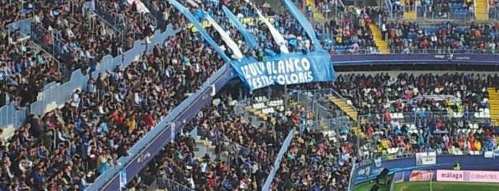 Estadio La Rosaleda is one of Campos de fútbol.