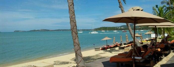 Bo Phut Resort And Spa is one of Ko Samui Paradise = Peter's Fav's.