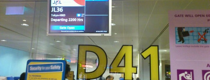 Gate D41 is one of SIN Airport Gates.