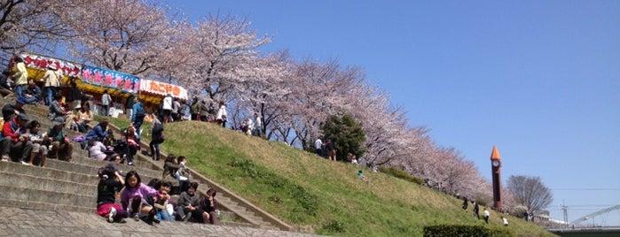 運河水辺公園 is one of サイクリング.