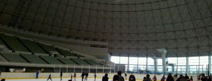 東和薬品RACTABドーム (大阪府立門真スポーツセンター) is one of スケートリンク.
