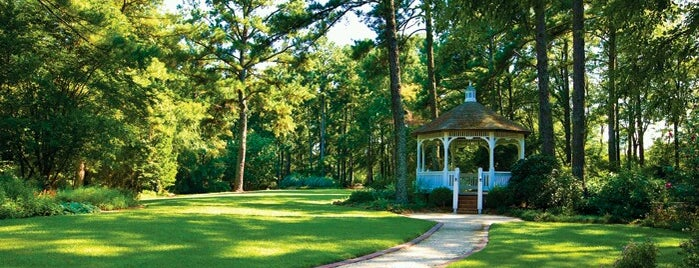 Cape Fear Botanical Garden Is One Of The 15 Best Quiet Places In  Fayetteville.