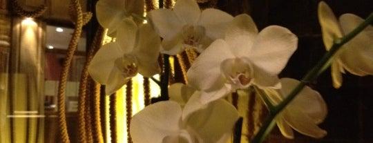 Silk & Spice is one of Restau's.