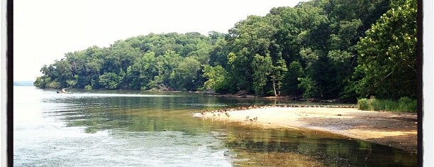 Mason Neck State Park is one of DC Museum.