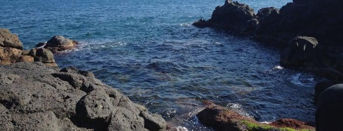 La Scogliera is one of MyCity Beach - Catania & Siracusa.