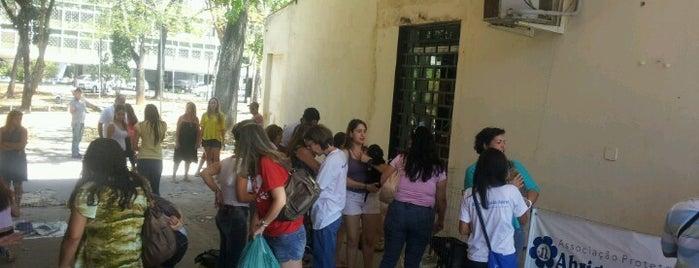 Feira de Doação de Animais is one of comércio & serviços.