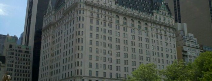 The Plaza Hotel is one of 101 places to see in Manhattan before you die.