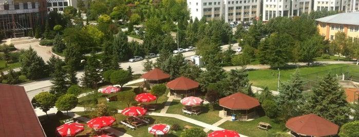 Başkent Üniversitesi is one of okullar.