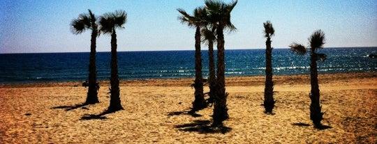 Playa de El Campello is one of Playas.