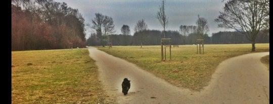 Volkspark Niddatal is one of Must-visit Parks & Outdoors in Frankfurt.