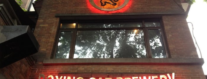 Boxing Cat Brewery | 拳击猫餐厅 is one of Craft beer around the world.