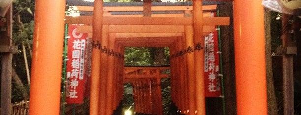 花園稲荷神社 is one of 行った所&行きたい所&行く所.