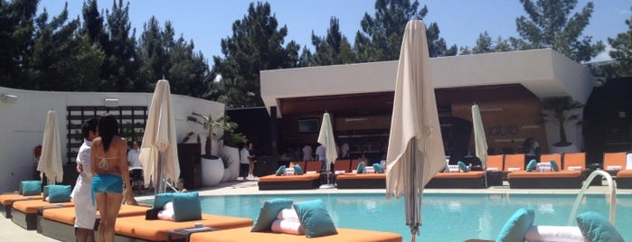 LIQUID Pool Lounge is one of Best Vegas Pool Parties.