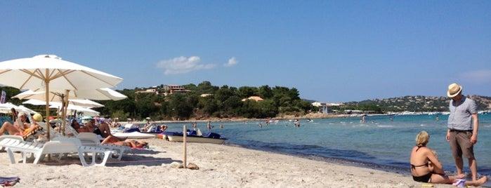 Plage de Pinarellu is one of Corsica.
