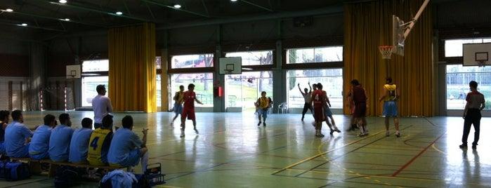 Centro Deportivo Municipal Vicente del Bosque is one of Conoce Madrid.
