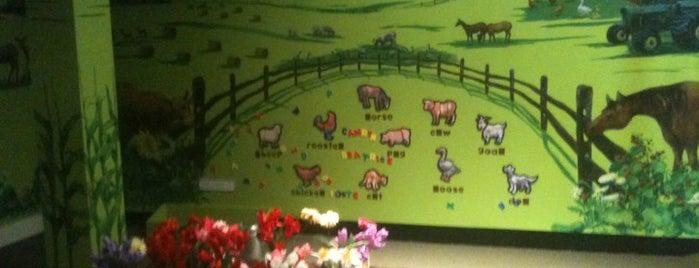 Bucks County Children's Museum is one of Kid Stuff.