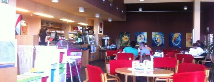 Café Gaviota is one of Cafés.