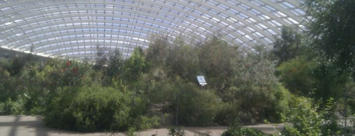 The National Botanic Gardens Of Wales is one of Shelbyart's Favourite Places.