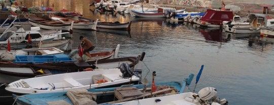 Karaburun is one of İzmir.