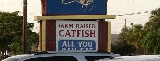 Catfish Dewey's is one of Favorite Restaurants.