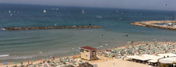 Frishman Beach is one of Israel.