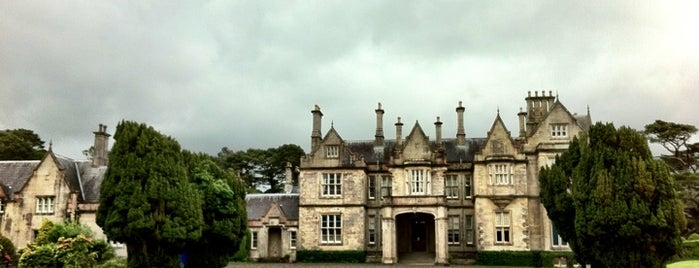 Muckross House is one of Irlande.