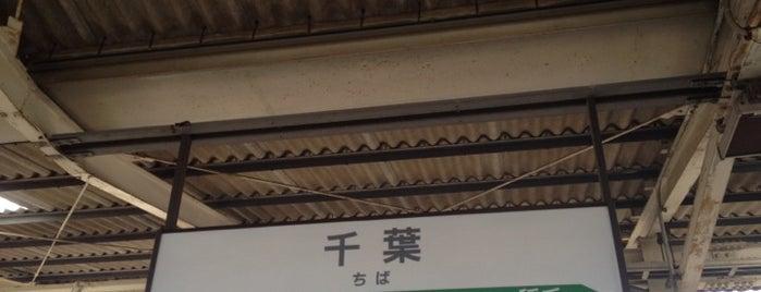 JR Chiba Station is one of 東京近郊区間主要駅.