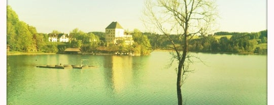 Sheraton Fuschlsee-Salzburg Hotel Jagdhof is one of Starwood Hotels in Germany, Austria & Switzerland.