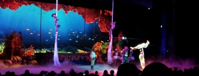 SeaWorld Orlando is one of Dicas de Orlando..