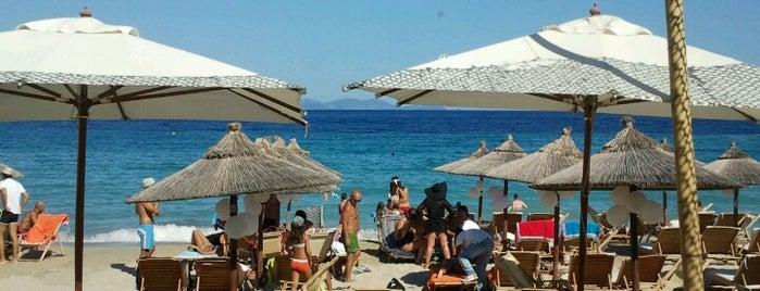 Λευκή Άμμος is one of Off to Chalkidiki ♥ (drinks 'n' food).