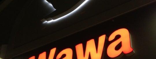 Wawa is one of My Wawas.