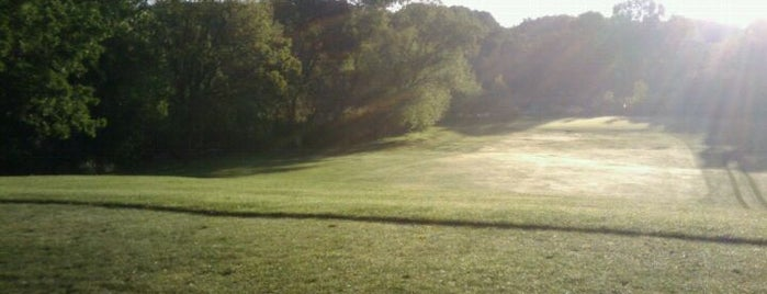 Twin Cities disc golf courses