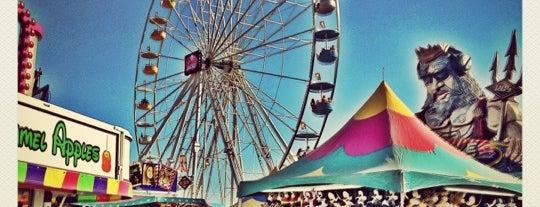 Del Mar Fairgrounds is one of * Spots *.