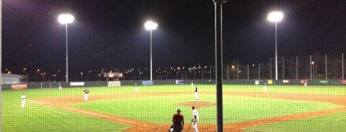 Mainz Athletics Ballpark is one of Baseball - 1. Bundesliga Nord und Süd.