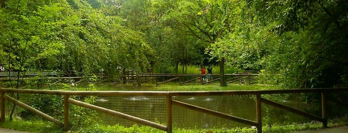 Parco Nuove Gemme is one of to visit.