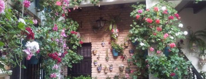 Casa-Patio de la calle Custodio, 5 is one of Patios de la Zona San Lorenzo.