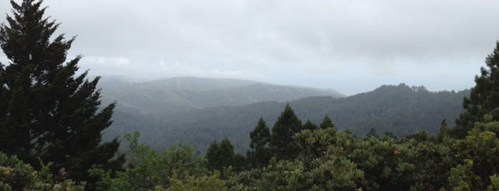 Mount Tamalpais State Park is one of San Francisco.