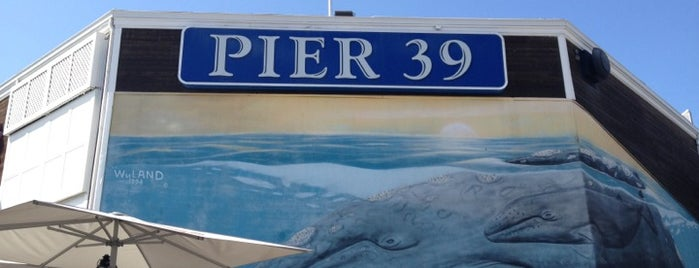 Pier 39 is one of San Francisco ♥.