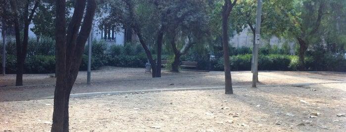 Parc de Monterols is one of Dog friendly.