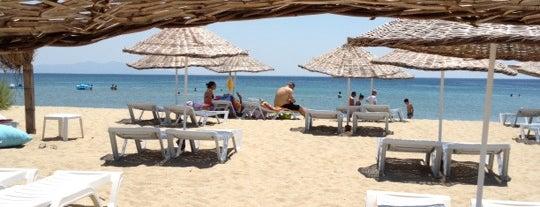 El Turco Beach Club is one of Kamp.