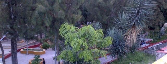 Parque Hundido is one of Reto 100 ZMG.