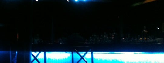 The Blue Bar is one of Bangalore Hot Spots.