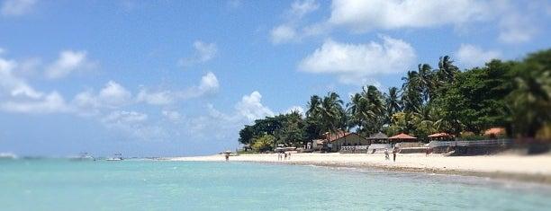 Praia de Tamandaré is one of Meus Lugares.