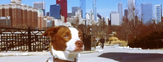 Grant Bark Park is one of The 15 Best Dog Runs in Chicago.